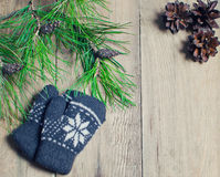 Mittens, pine cones and pine branch on a wooden table Stock Photos