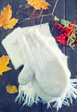 Mittens and scarf Royalty Free Stock Photography