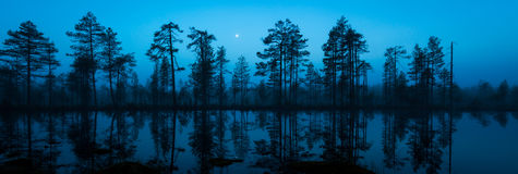 Mitternachtsmond Lizenzfreies Stockfoto