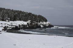 Mittlere Bucht-Winterküstenlinie, Avalon-Region Neufundland stockfoto
