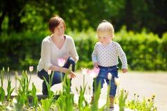 Mittlere Greisin und ihr Enkel, die in Park geht Lizenzfreie Stockfotos