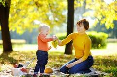 Mittlere Greisin und ihr kleiner Enkel, die ein Picknick hat Stockfotografie