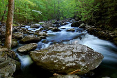 Mittlere Zinke des kleinen Flusses, Great Smoky Mountains Lizenzfreie Stockbilder