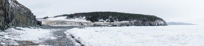 Mittlerer Bucht-Neufundland-Eis-Fluss lizenzfreies stockbild