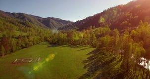 Mittlerer Flug über frischem Gebirgsfluss und Wiese am sonnigen Sommermorgen Ländlicher Schotterweg unten Stockfotografie