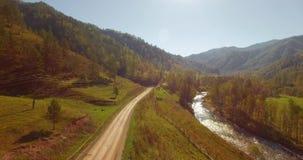 Mittlerer Flug über frischem Gebirgsfluss und Wiese am sonnigen Sommermorgen Ländlicher Schotterweg unten Kühe und Auto stock footage