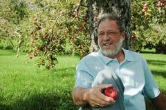 Mittlerer gealterter Mann im Obstgarten Stockbild
