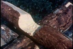 Mittlerer Schuss von Händen mit der Axt, die eine Kerbe im Klotz hackt stock footage