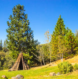 Miwuk Indian Tepee At Base of Hill. American Miwuk Indian Tepee Against Trees & Blue Sky Stock Images