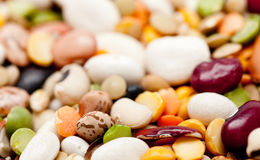 Mix of 17 beans and barley Royalty Free Stock Image