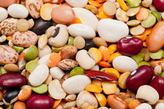 Mix of 17 beans and barley Royalty Free Stock Photography