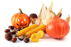 Mix of autumn harvest products like smiling pumpkin, chestnuts m Royalty Free Stock Photos