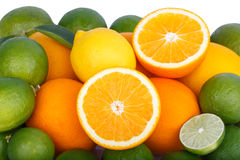 Mix av nya citrusfrukter fotografering för bildbyråer