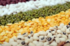 Mix of bean Royalty Free Stock Photo