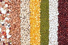 Mix of bean Royalty Free Stock Images