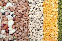 Mix of bean Stock Photo