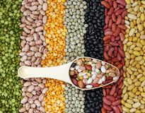 Mix of bean Stock Photo