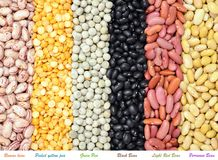 Mix of bean and pea Stock Image