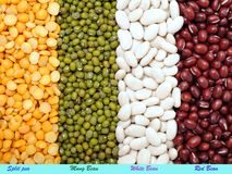 Mix of bean and pea Stock Photo