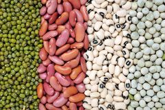Mix bean and pea. For background uses royalty free stock photography
