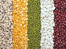 Mix of bean and pea Royalty Free Stock Photography