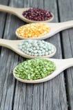 Mix bean Stock Images
