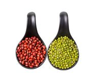 Mix beans in ceramic spoons on white background Stock Images