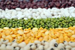 Mix beans Stock Photography