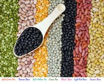 Mix beans and pea Stock Images