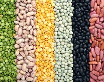 Mix of beans Royalty Free Stock Photo