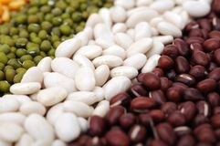 Mix of beans Stock Photography
