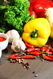 Mix of beautiful, fresh, vivid vegetables Stock Photography