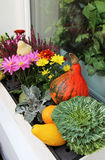 Mix of beautiful vivid terrace fall flowers and pumpkin. Mix of beautiful fall decorations on the terrace garden stock photo