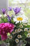 Mix of beautiful wildflowers royalty free stock image