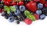 Mix berries at border of image with copy space for text. Ripe blueberries, blackberries, raspberries, currants and stra. Mix berries and fruits at border of Stock Photography