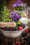 Mix of berries in a bowl. Royalty Free Stock Photo