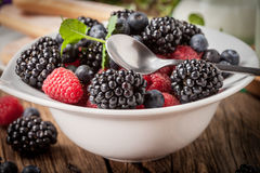 Mix of berries in a bowl. Royalty Free Stock Images