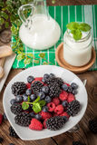 Mix of berries in a bowl. Stock Photography