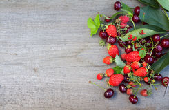 Mix of berries Stock Image