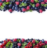 Mix berries and fruits at border of image with copy space for text. Ripe blueberries, blackberries, raspberries and currants on wh. Ite background. Background Royalty Free Stock Image