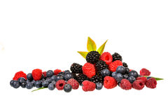 Mix berries isolated Stock Image