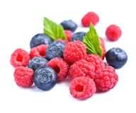 Mix berries isolated Royalty Free Stock Images
