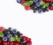 Mix berries isolated on a white. Berries and fruits with copy space for text. Ripe blueberries, blackberries, red currants, black. Mix berries isolated on a Royalty Free Stock Image