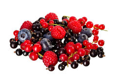Mix of Berry's Stock Image