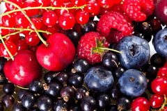 Mix of Berry's Stock Images