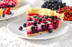 Mix berry tart, pie, cake with raspberries, bilberries, bluberries, red currant and cream Royalty Free Stock Photos