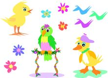 Mix of Birds and Flowers Royalty Free Stock Photos