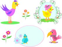Mix of Birds and Flowers Stock Photography