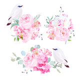 Mix of bouquets and Bali myna birds vector design set Stock Photos