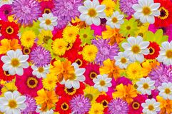 Mix of bright colors, seamless background stock images